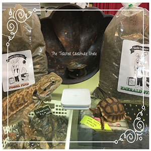 The Teacher Creature Store